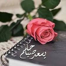 يسعد صباحكم we heart it - صور ورد وزهور Rose Flower images