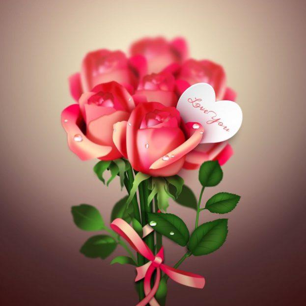 ورد أحمر رومانسي Red Roses Expression Of Love - صور ورد وزهور Rose Flower images