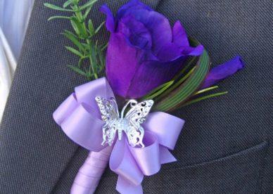صور وردة البنفسج الجميلة-صور ورد وزهور