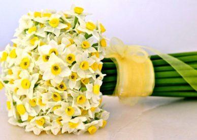 صور باقات زهرة النرجس فيس بوك-صور ورد