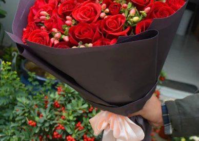صور ورود حمراء جديدة جميلة طبيعية-صور ورد وزهور