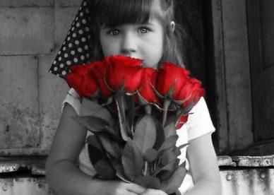 أحلى صور ورد رومانسية جميلة - صور ورد
