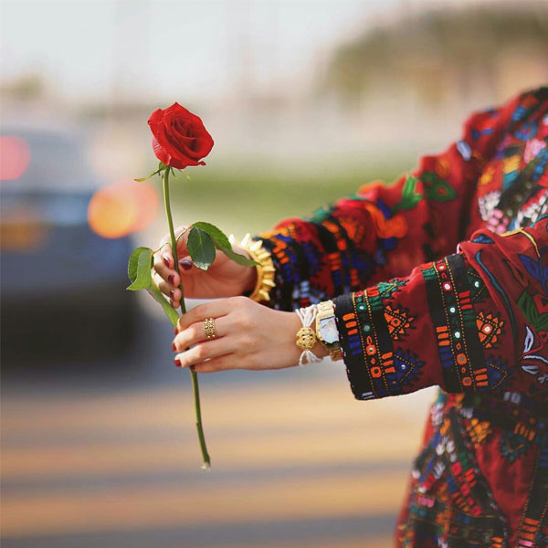ورد رومانسي حلو للبنات صور ورد وزهور Rose Flower Images