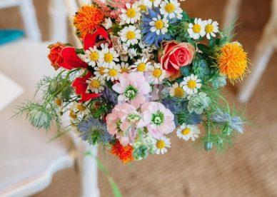 صور ألوان الورد - صور ورد