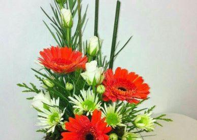 صور ورد أجمل الورود - صور ورد