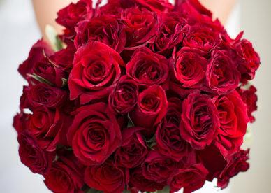 بوكيه ورد أحمر رومانسي Red Wedding Flowers - صور ورد وزهور Rose Flower images
