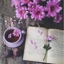 صور رمزية واتس اب وانستقرام ورد بنفسجي حلو - صور ورد وزهور Rose Flower images