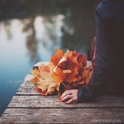 صورة رمزية أوراق الخريف المتساقطة رمزيات بنات حلوة رائعة للواتس اب والانستقرام - صور ورد وزهور Rose Flower images