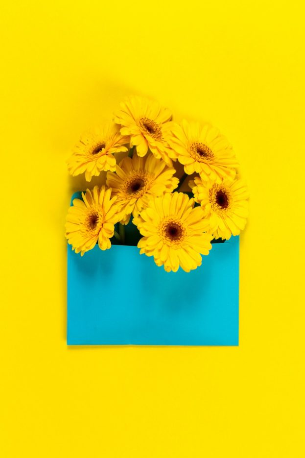أحلى صور الورد Yellow Flowers On A Yellow Table With A Blue Board - صور ورد وزهور Rose Flower images