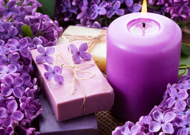 صور ورد بنفسجي حب وأحلى شموع رومانسية بنفسجية- صور ورد وزهور