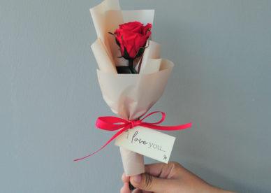 صور زهور وباقات ورد جميلة وأحلى ورد الحب للحبيب- صور ورد