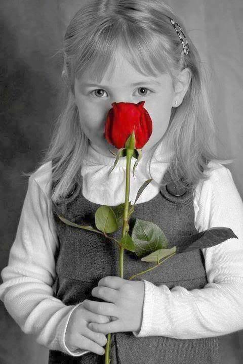 أجمل صور ورد رومانسية جديدة - صور ورد