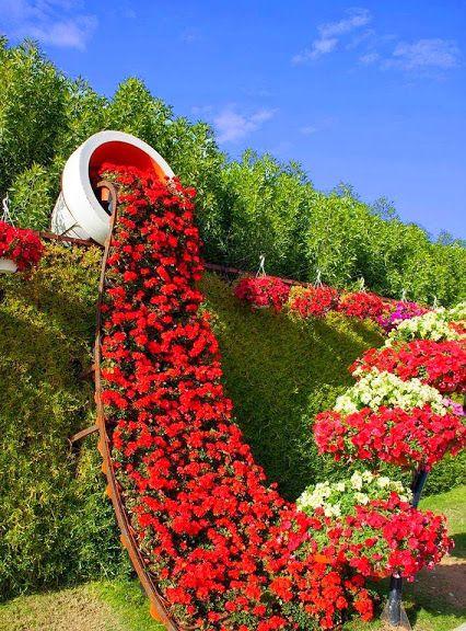 صور الورود الحلوة والطبيعية الرومانسية - صور ورد