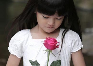 صور جمال الورد - صور ورد