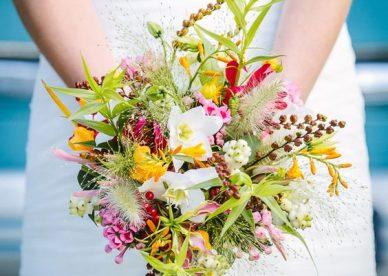 أجمل الورد والزهور في العالم - صور ورد