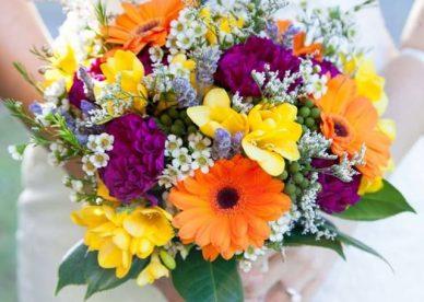 أجمل زهور العالم - صور ورد